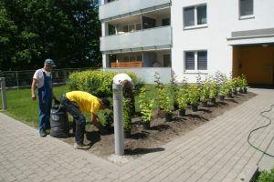 Kompleksowe sprzątanie osiedli w Warszawie